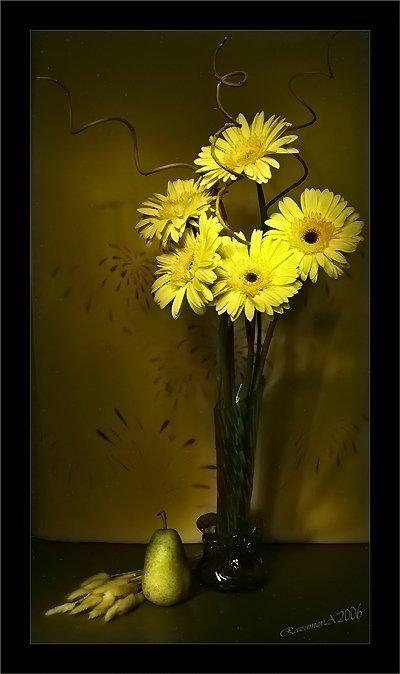 Букет, герберы, цветы, световая кисть, натюрморт, Anjelochka