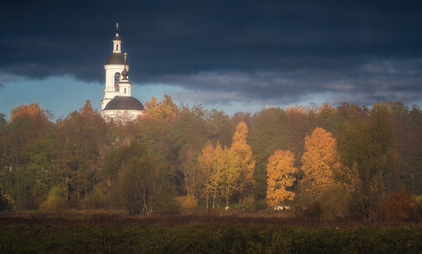 пейзаж, филипповское, утро, осень, природа, Левыкин Виталий