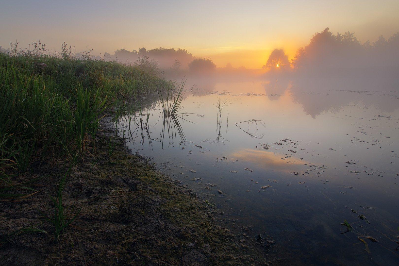 река, солнце, туман, утро, рассвет, волчья, river, sun, fog, morning, dawn, Виктор Тулбанов