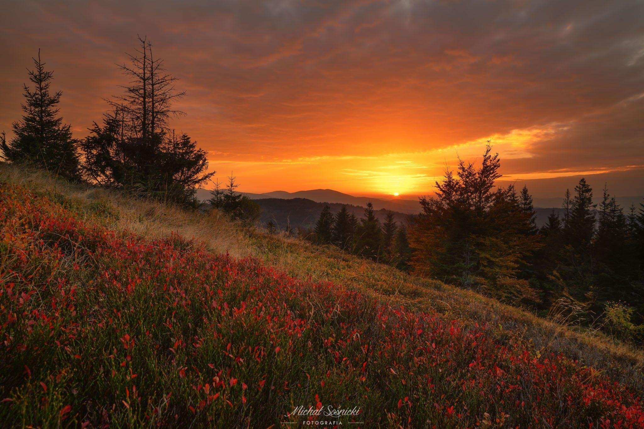 #autumn #nature #landscape #color #sunset #sunrise #pentax #benro, Sośnicki Michał