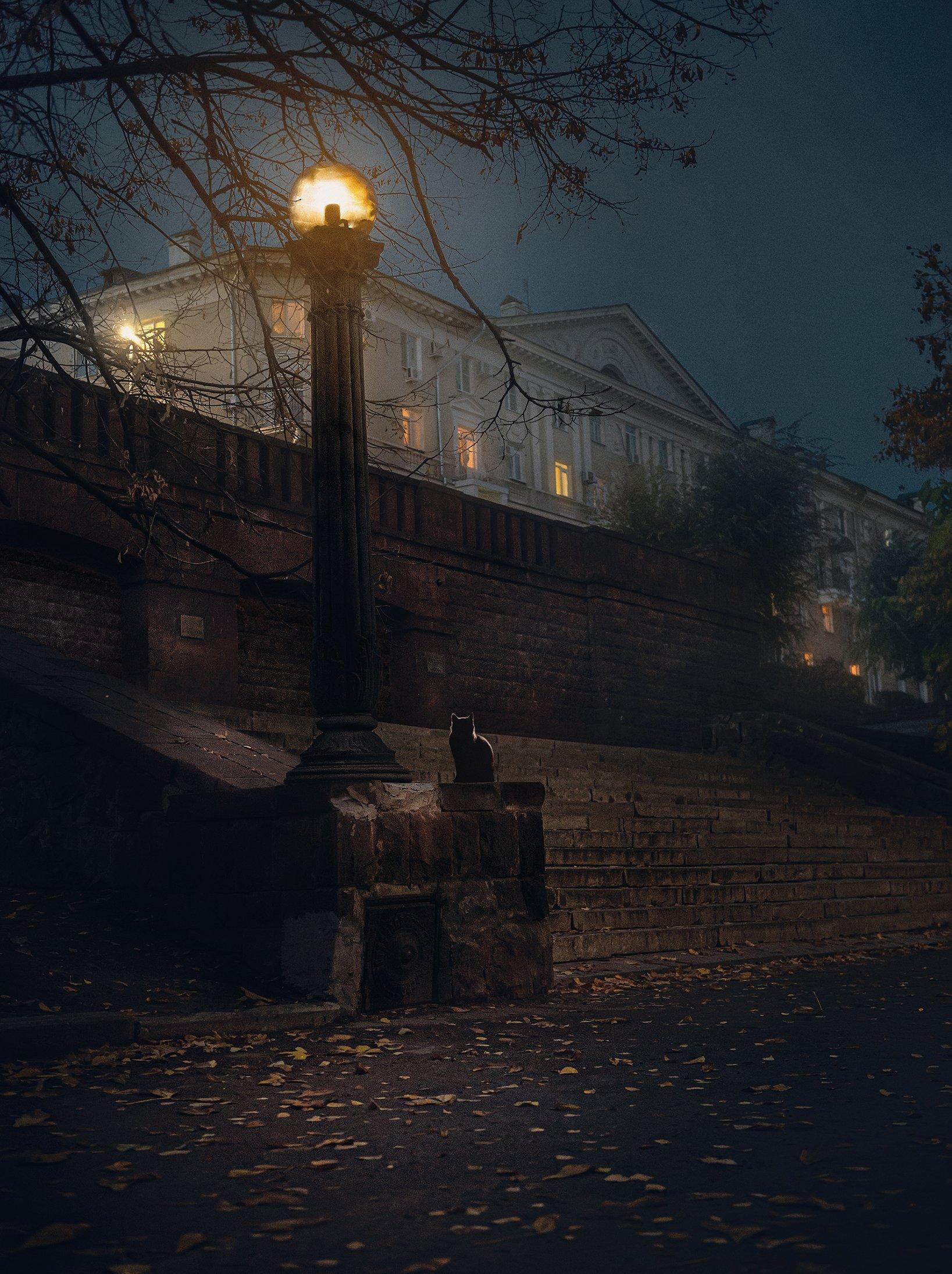 город, архитектура, ночь, улица, Алексей Ермаков