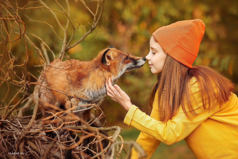 лиса, fox, art photo, art, портрет, осень, autumn, ребенок, девочка, girl, животное, друзья, happy, любовь, love, 105mm, kid, children, beautiful, закат, nikon, Юлия Сафо