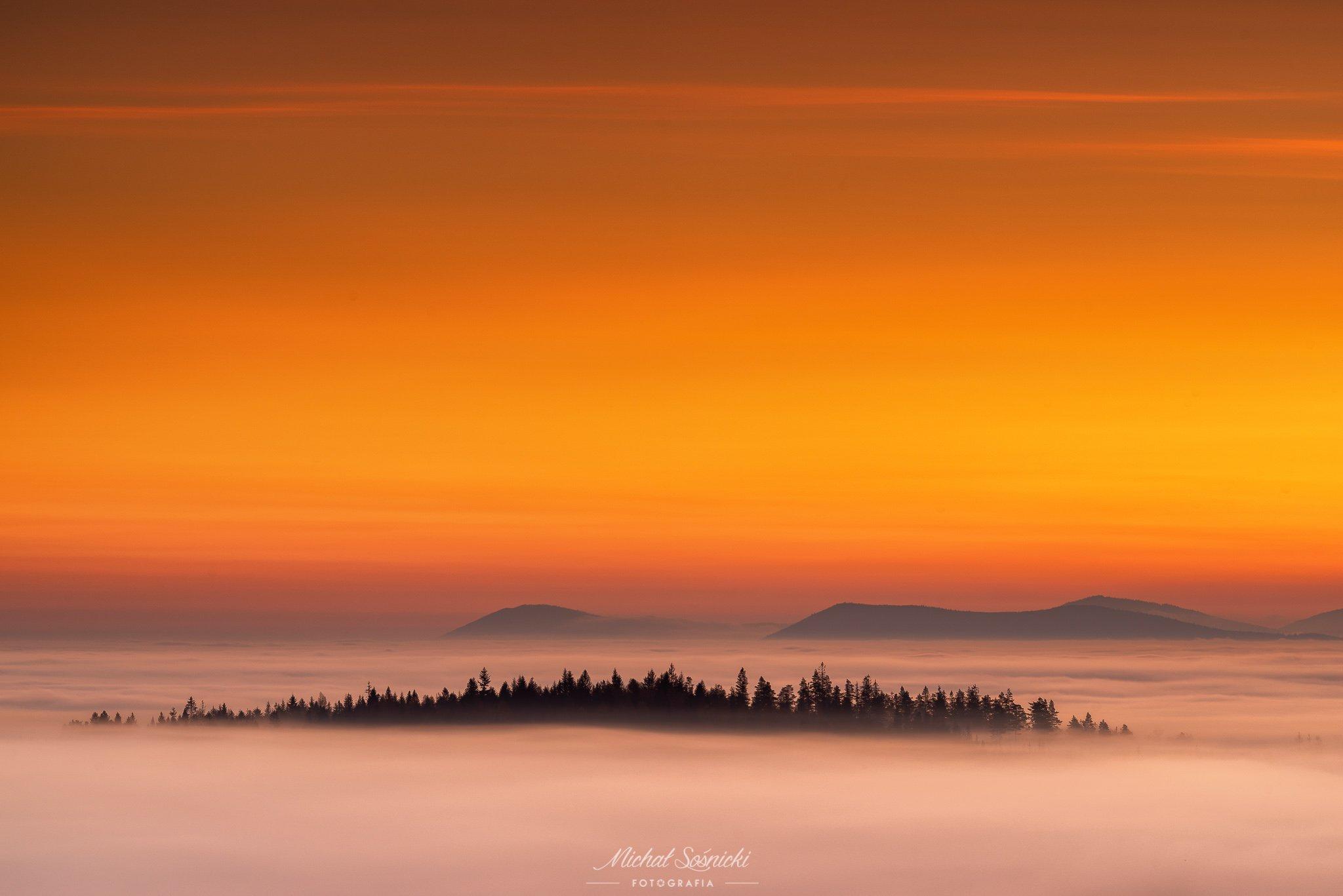 #poland #sunrise #pentax #benro #sky #fog #foggy #color #morning #trees, Sośnicki Michał