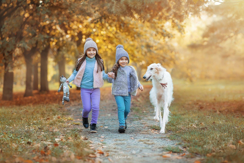 собака, dog, борзая, art photo, art, портрет, осень, autumn, ребенок, девочки, girl, животное, друзья, happy, любовь, love, 105mm, kid, children, beautiful, закат, nikon, Юлия Сафо