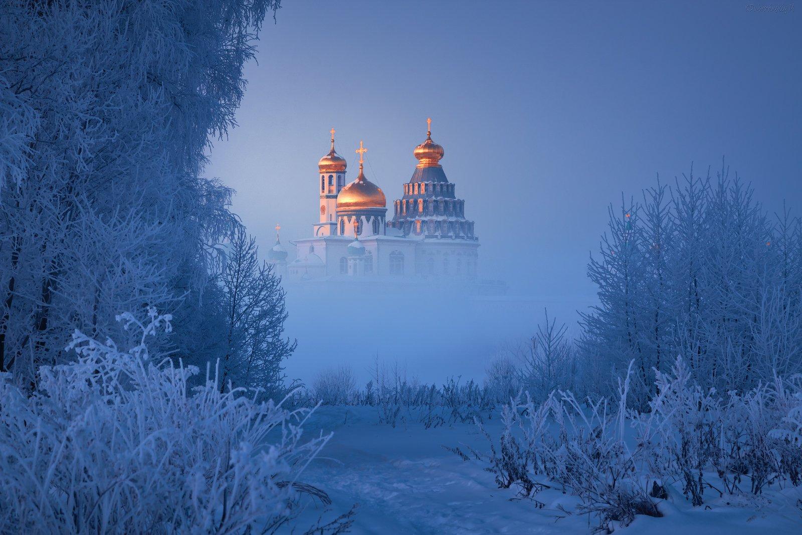 истра, новоиерусалимский монастырь, мороз, иней, туман, Дубровинский Михаил