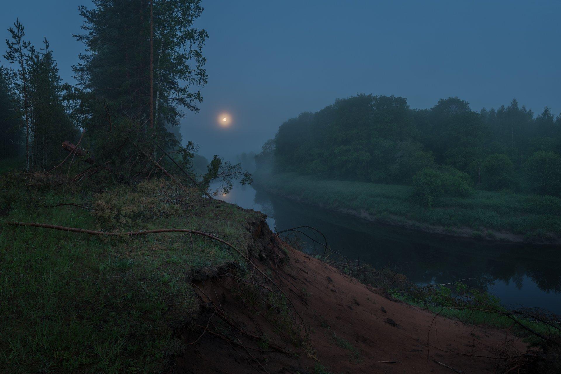 новгородская область, ночь, луна, туман, Роман Ф