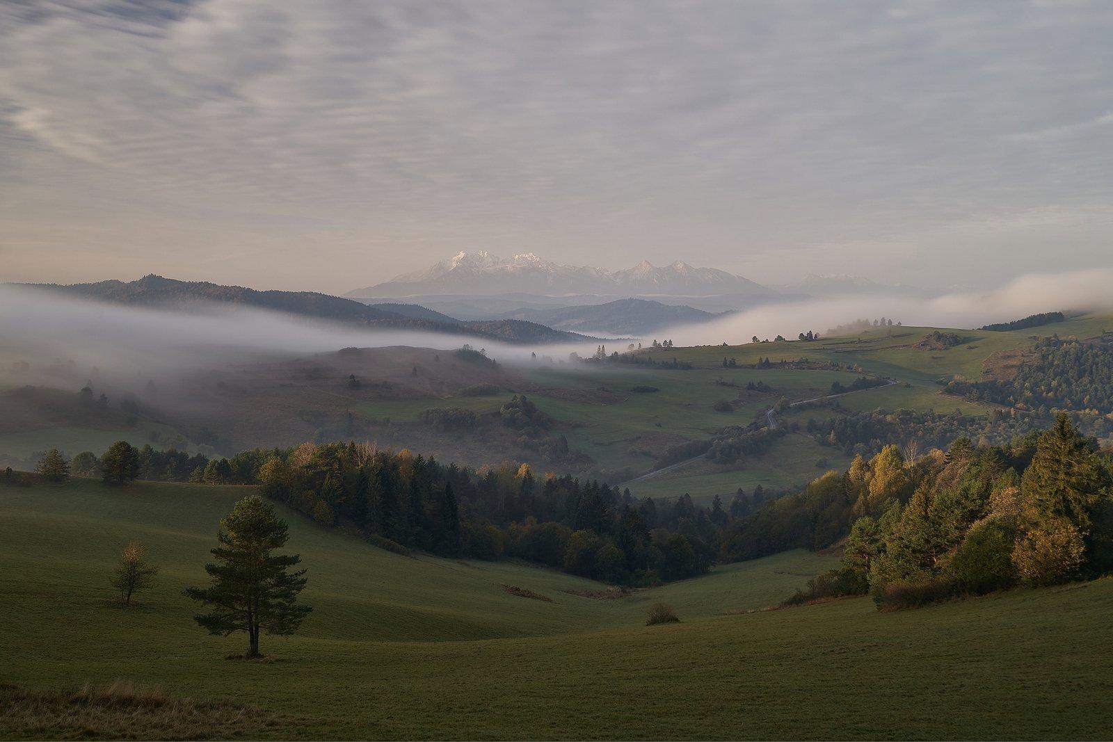 fog,morning,sunrise,mist,hill,hills,autum, Rafal