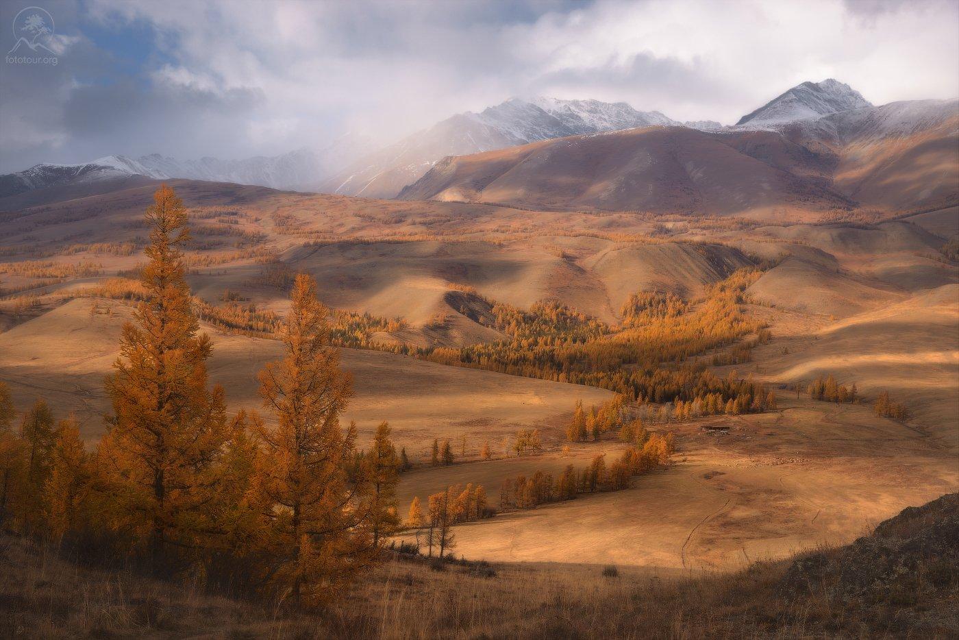 алтай, осень, горы, долина, Гордиенко Анатолий
