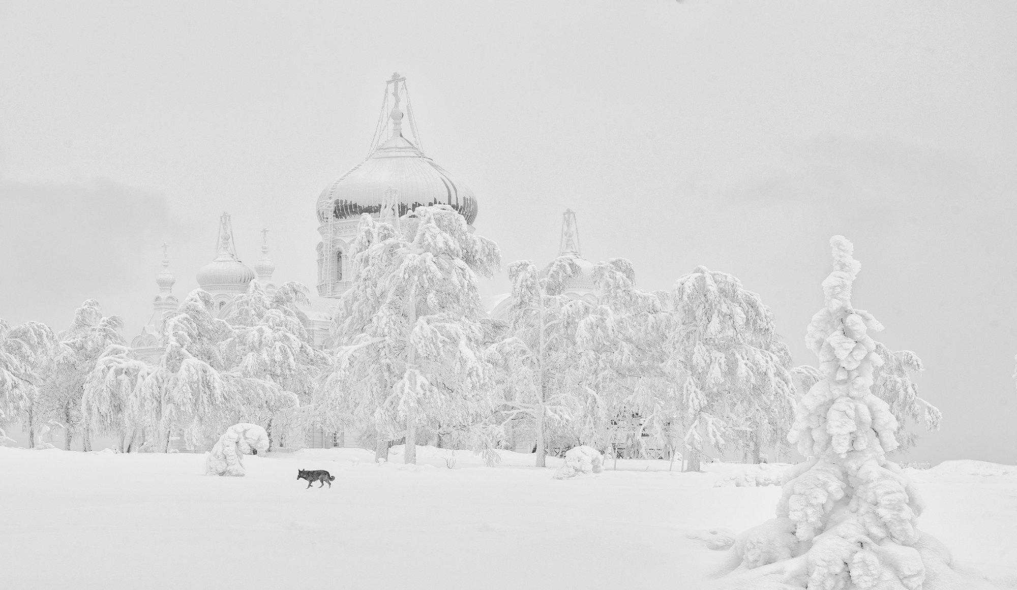 зима снег белогорский монастырь, Виктор Новокрещенов