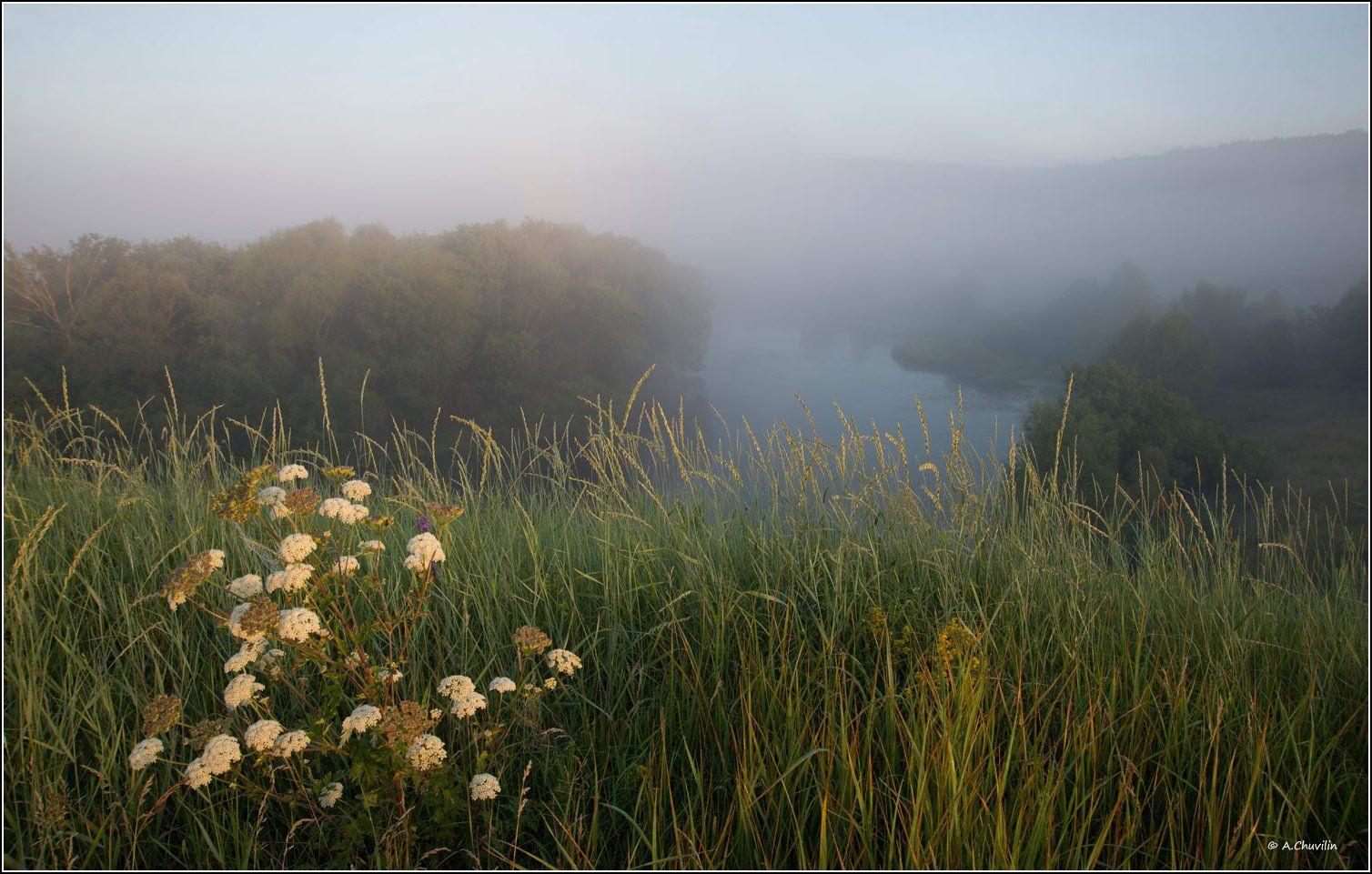 утро,думан,река,первые,лучи,загорается,новый,день, Александр Чувилин