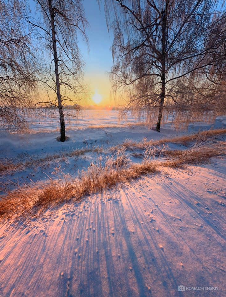 зима,деревья,утро, рассвет, Roma  Chitinskiy
