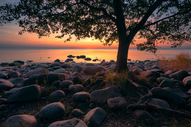 sunset, Andris