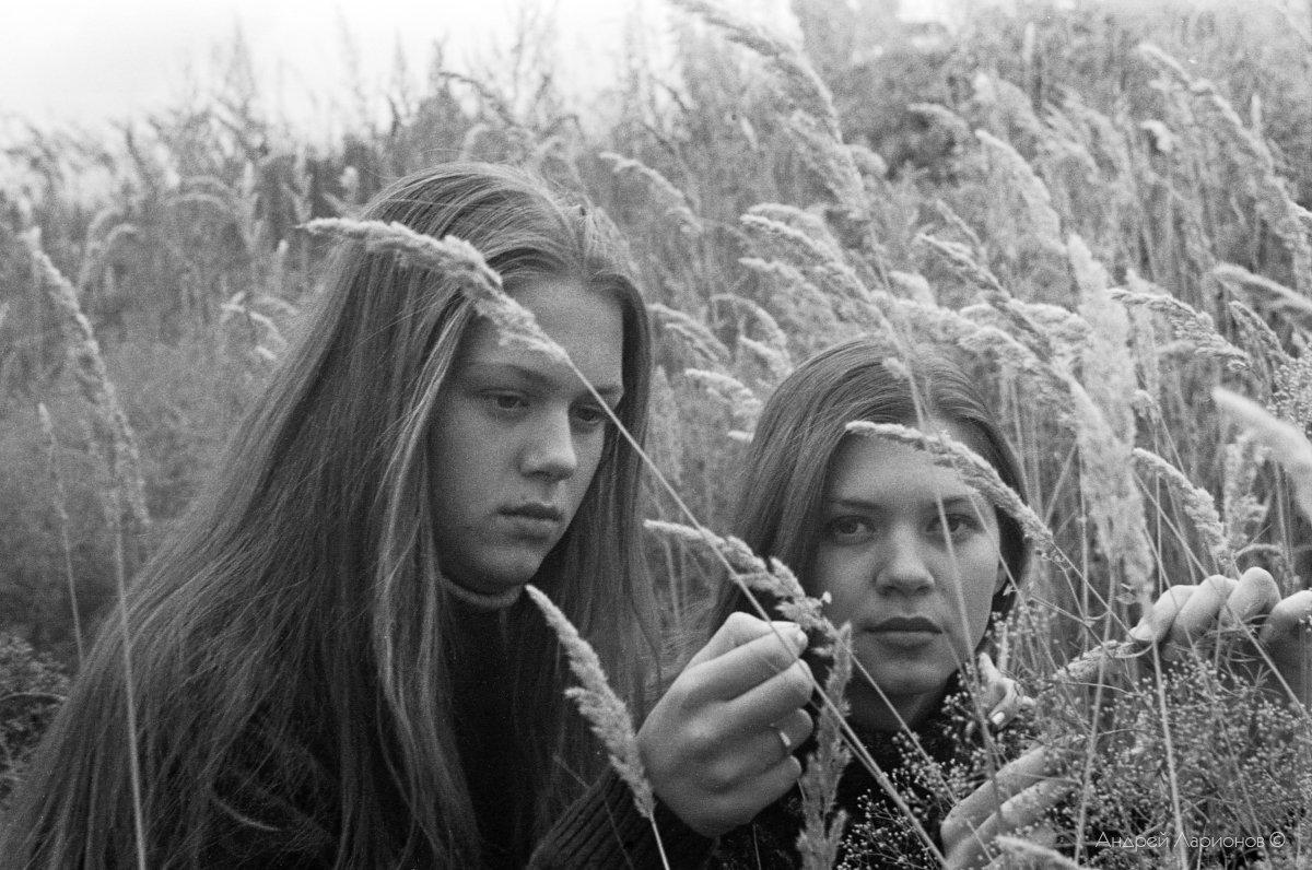 портрет, девушка, лето, трава, Андрей Ларионов