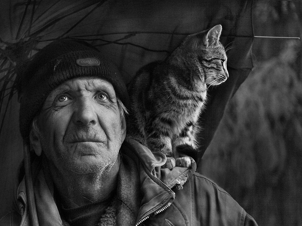 старик, кот, зонт, Ritta