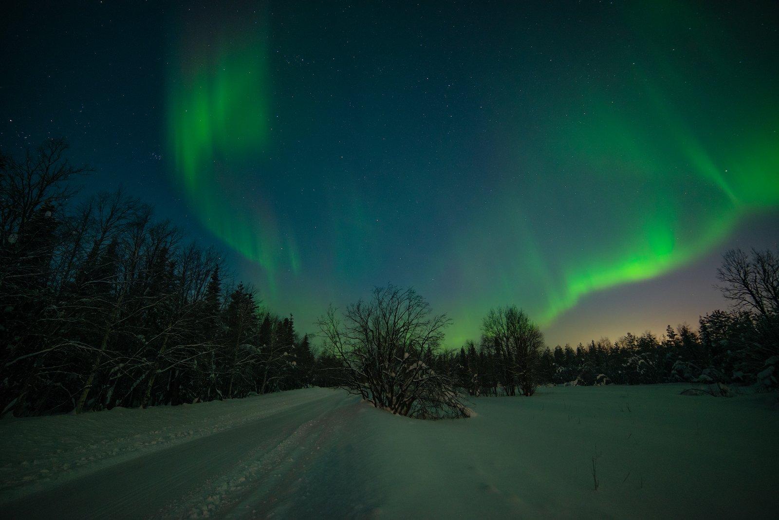 aurora borealis, северное сияние,хибины,север,кольский,заполярье,апатиты,мороз,, Роман Горячий