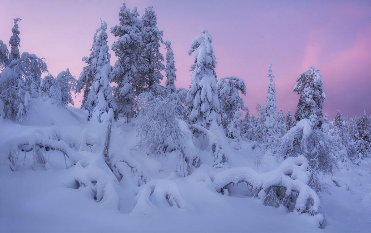 природа, пейзаж, север, кольский, панорама, природа россии, дикая природа, закат, свет, облака, вечер, тундра, Беляев Альберт