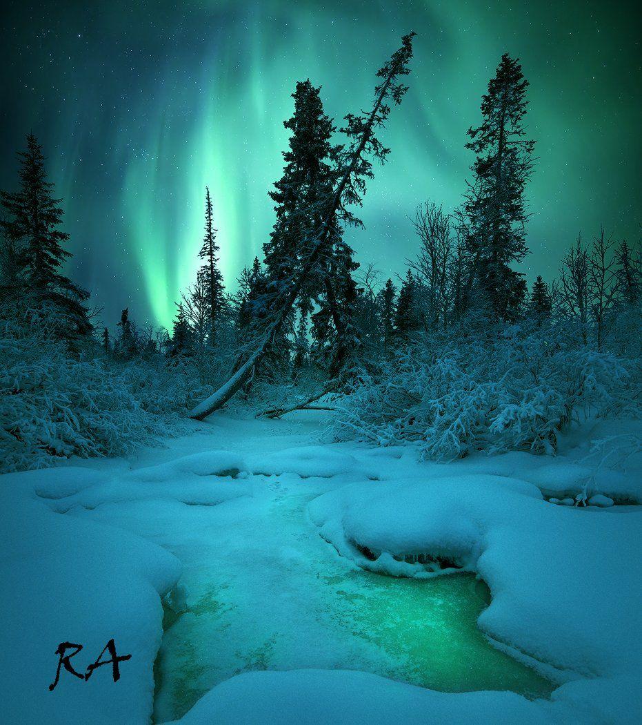 полярное сияние, aurora borealis, северное сияние, кольский полуостров,  Aleksey R.