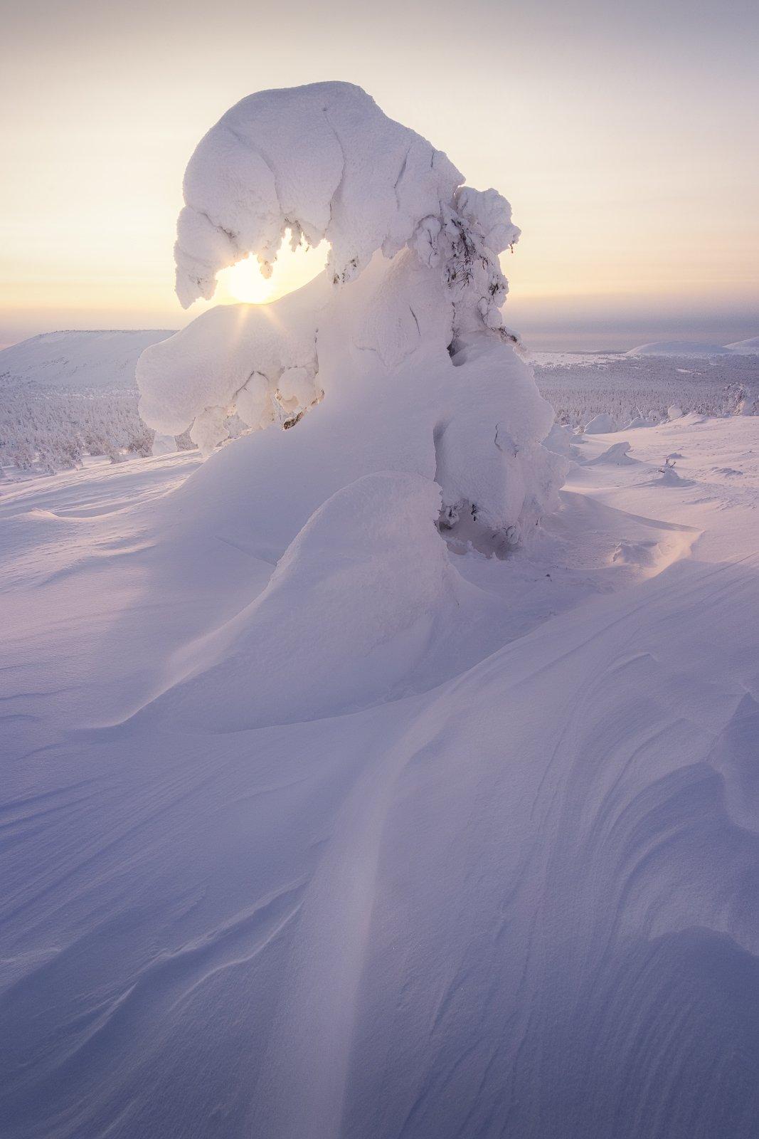 закат, главный уральский хребет, гух, зима, урал, северный урал, Желтов Глеб