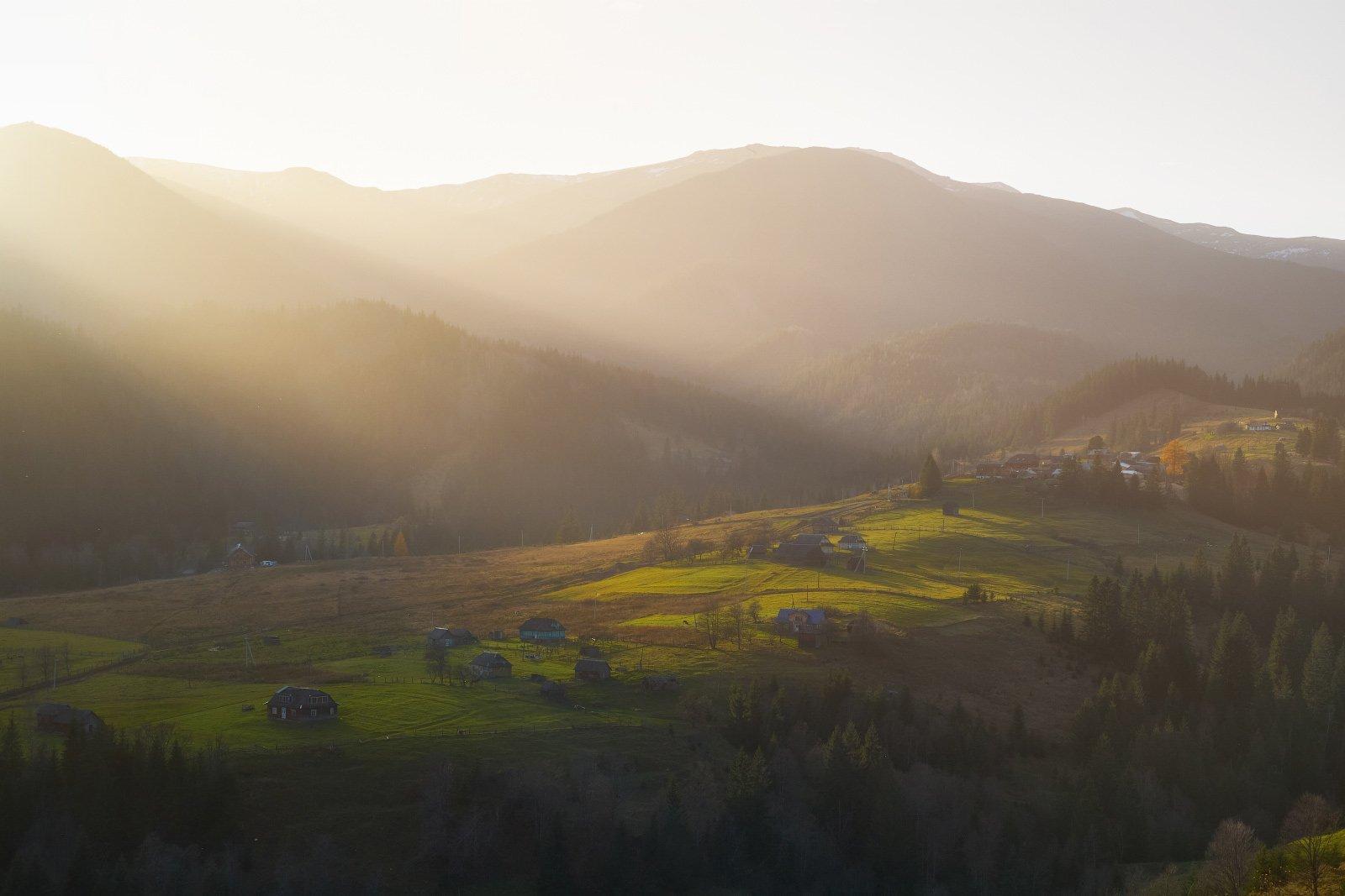 #landscape #nature #scenery #forest #wood #autumn #mist #misty #fog #foggy #river #waterfall #longexposure #mountain #vitosha #bulgari #aтуман #лес #oсень, Морозов Леонид