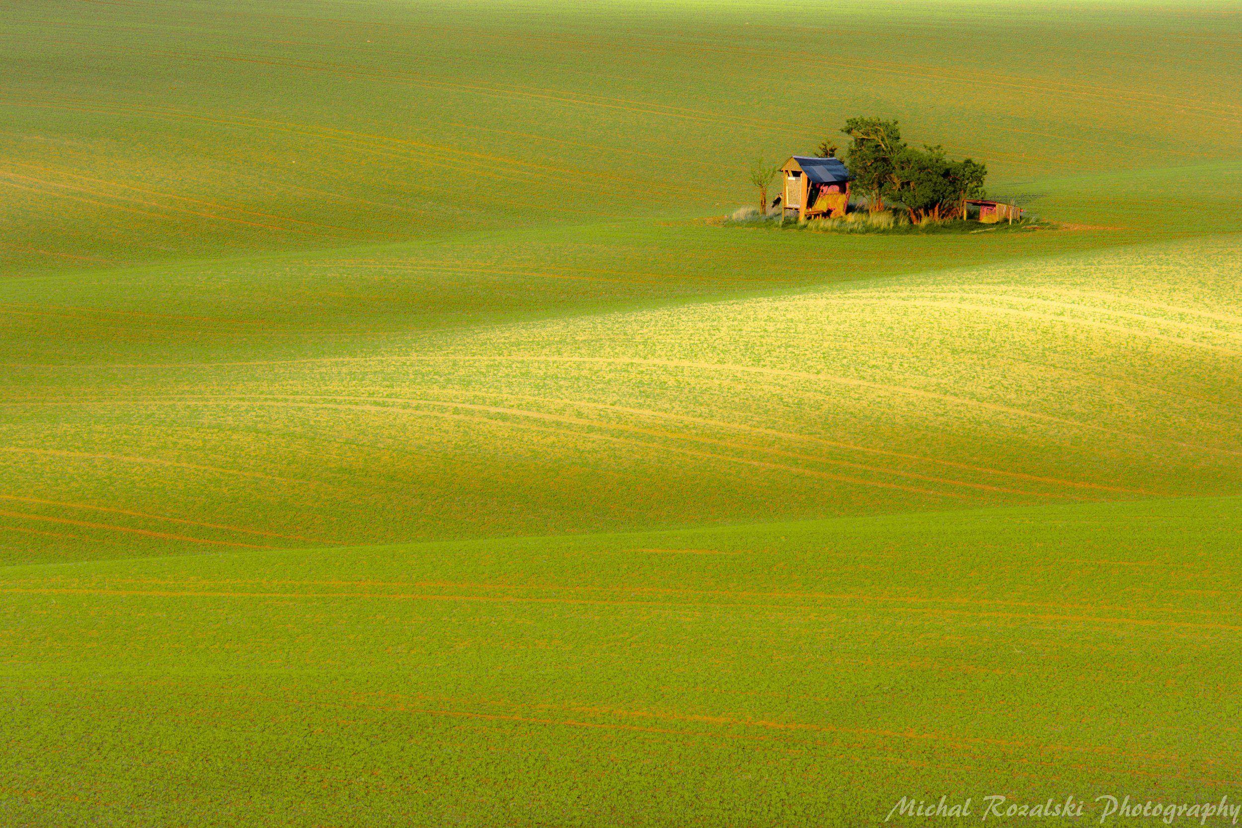 moravia, ,hills, ,rolling, ,spring, ,green, ,fields, ,agriculture, ,season, ,landscape, ,, Michal Rozalski
