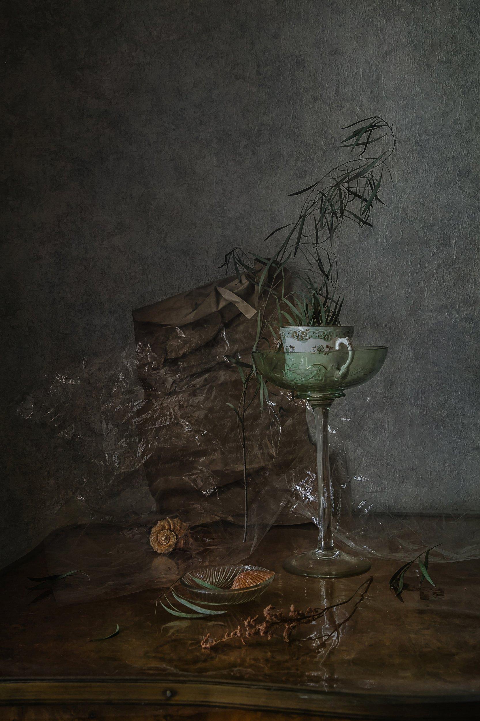 натюрморт, стекло, фарфор, ракушки, Анна Петина