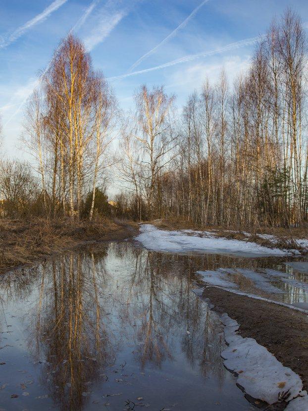 вечер апрель дорога вода закат, Алексеев Дмитрий