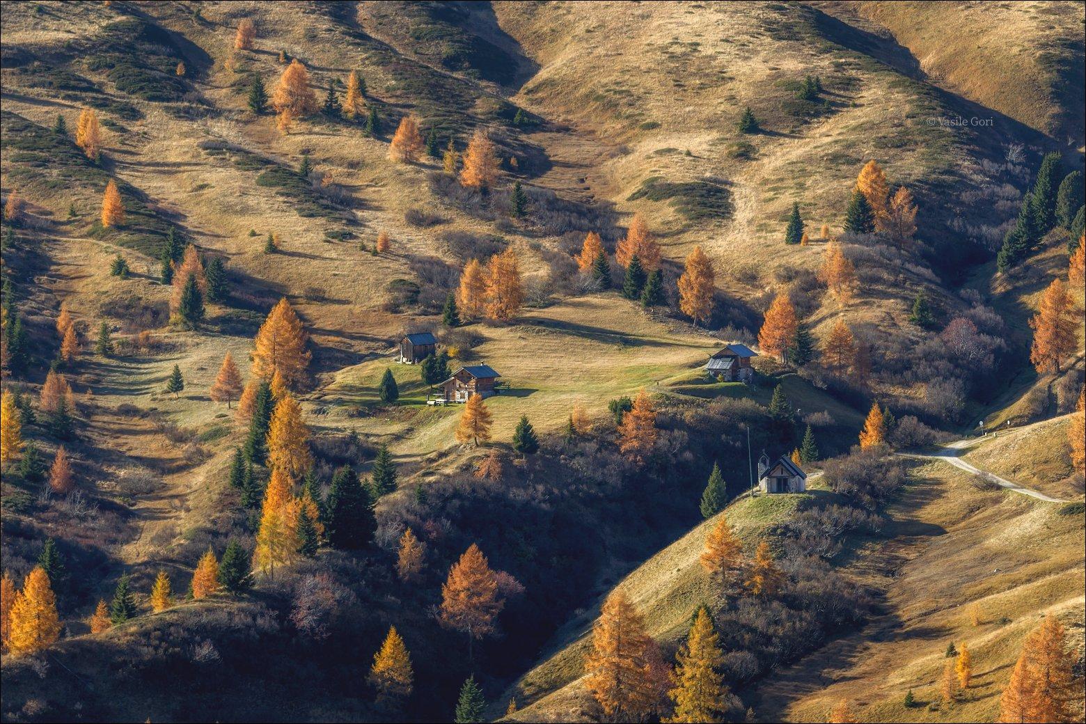доломитовые альпы,свет,passo giau,осень,вечер,италия,alps,пейзаж,лиственицы,dolomites, Гори Василий