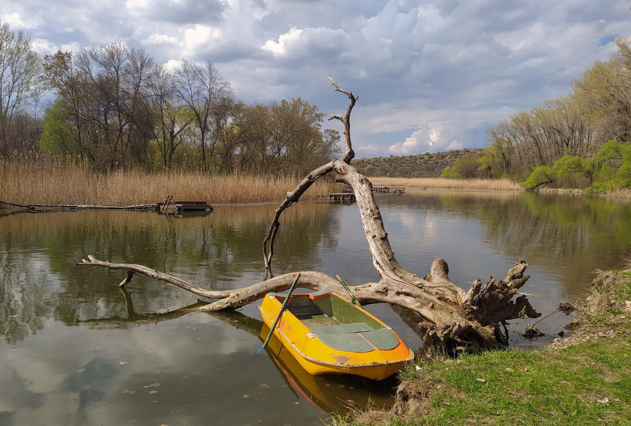 донецкая область, зуевка, Sergii Vidov