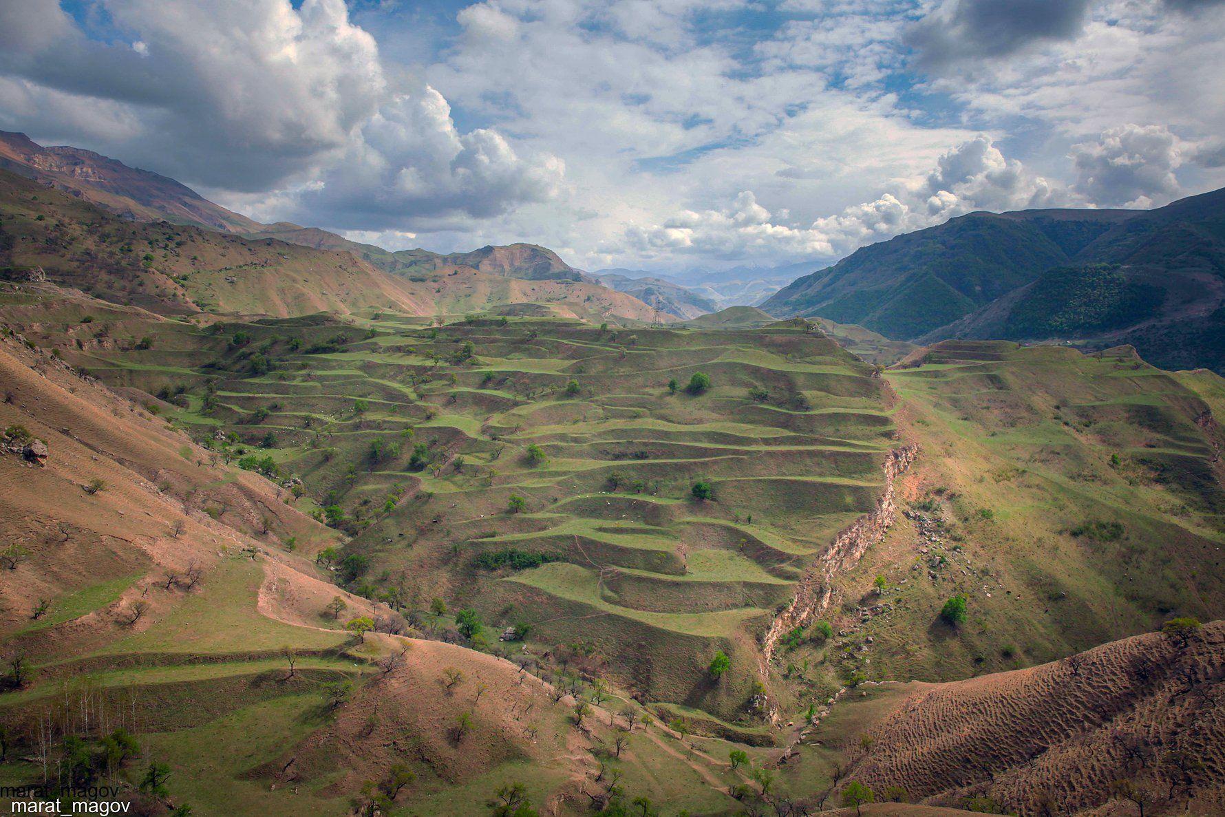 горы,весна,вершины,пейзаж,небо,деревья,дагестан,природа, Magov Marat