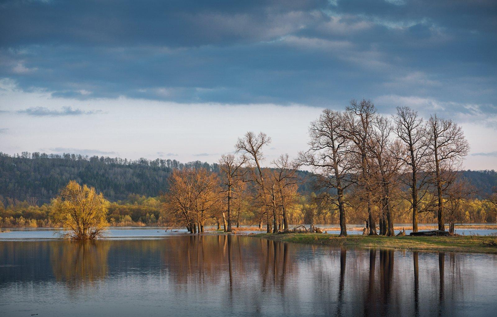 природа пейзаж вечер река деревья, Корнилов Михаил