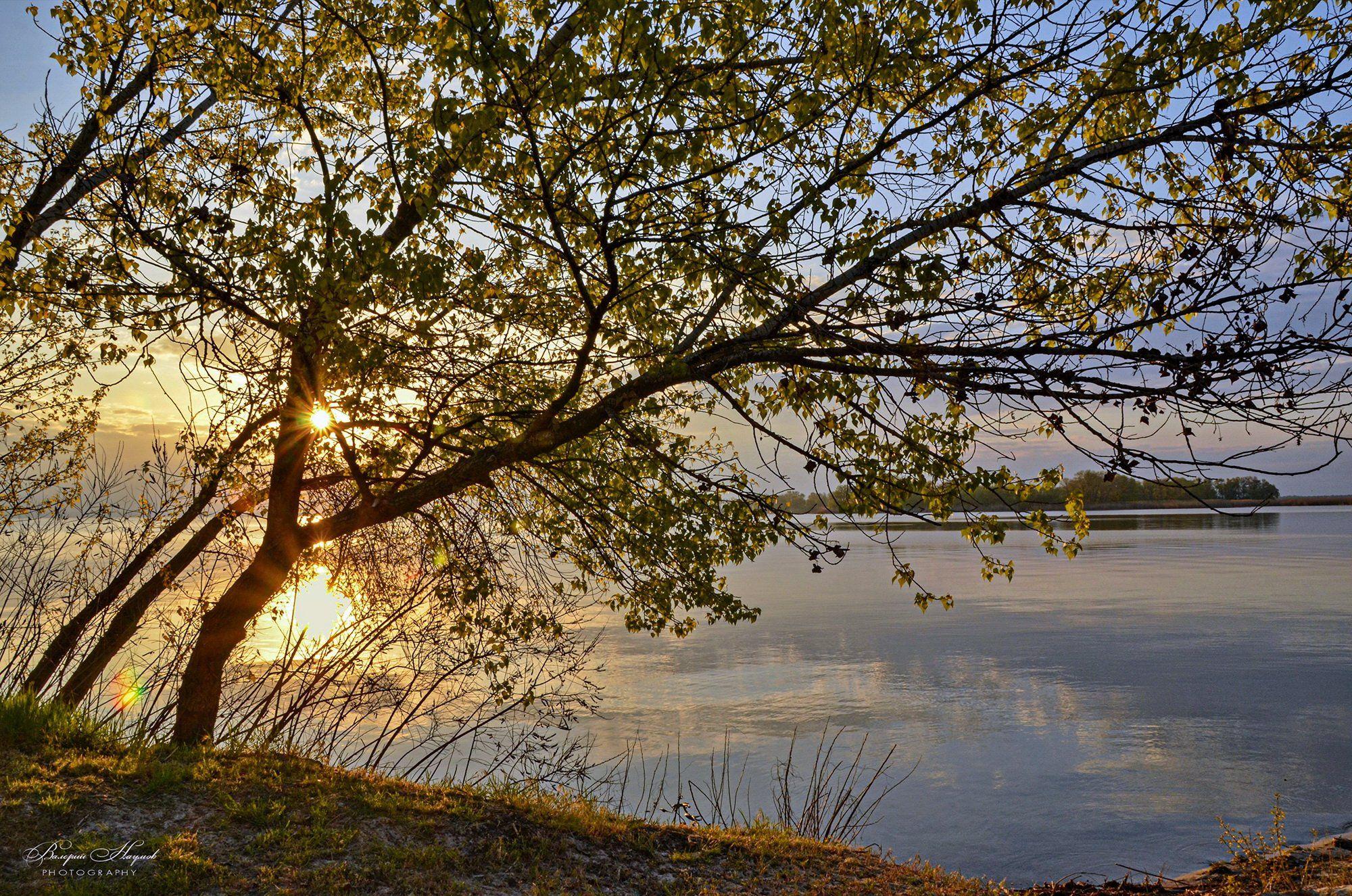 утро, май, рассвет, восход, небо, облака, отражение, тишина, первый листочки, Валерий Наумов