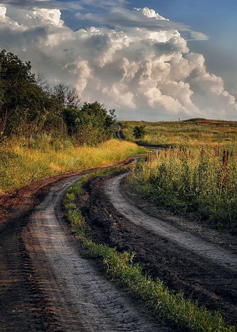 просёлочная дорога, дорога, облака, деревья, пейзаж, Диденко Юрий