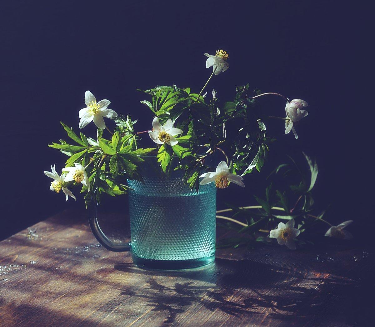 натюрморт,весна,цветы,ветреница,анемона, Наталия К