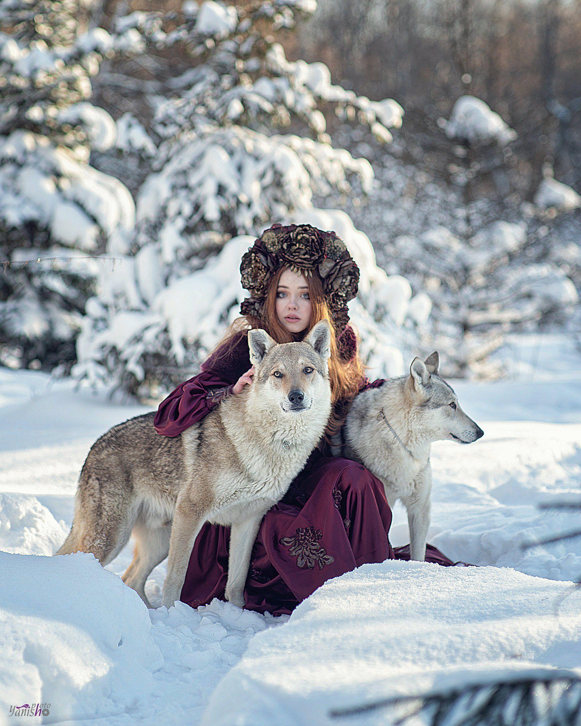 портрет, зима, красный, фентези, девушка, лес, сказка, холод, мороз, волки, животные, Ермакова Янина