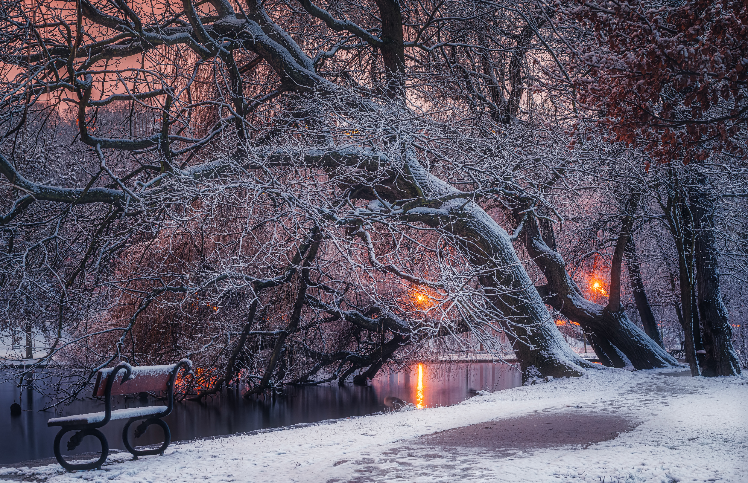 Нет людей  на улице  фотография  зима  снег  дерево  природа  Вода Природа  Холодная температура  день  Пейзаж   небо  спокойствие  Красота в природе  лес  Спокойная сцена  мороз , Ожерельев Андрей