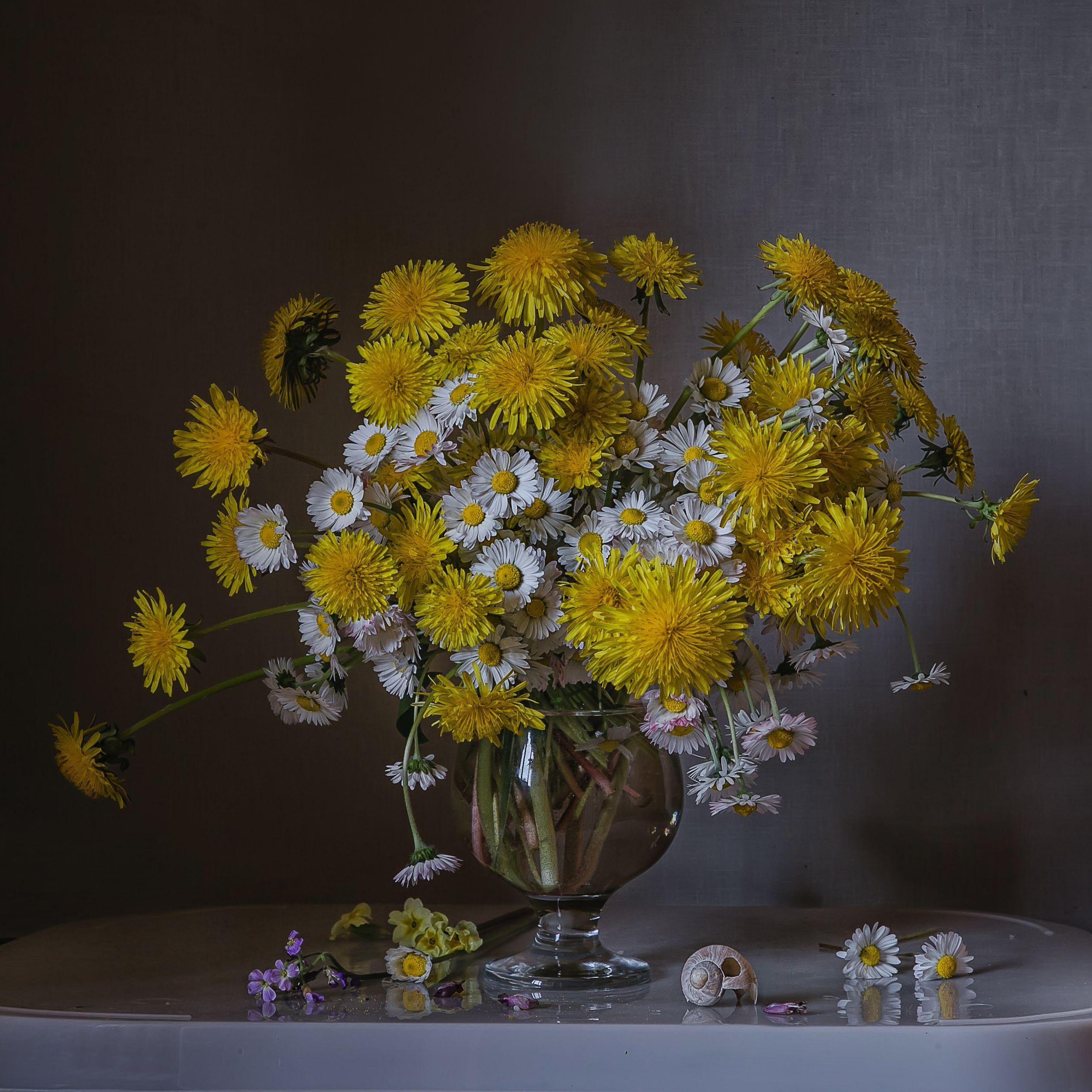 натюрморт, стекло, бокал, цветы, одуванчики, маргаритки, Анна Петина