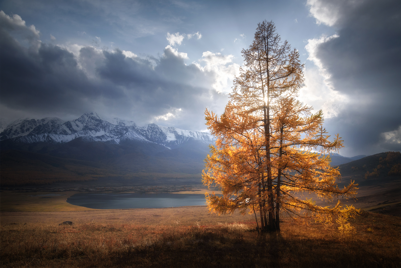 алтай, горный алтай, горы, курайская степь, урочище ештыкель, лиственницы, лиственница, золотая осень, гроза, сентябрь, altai mountains, Рубан Алена