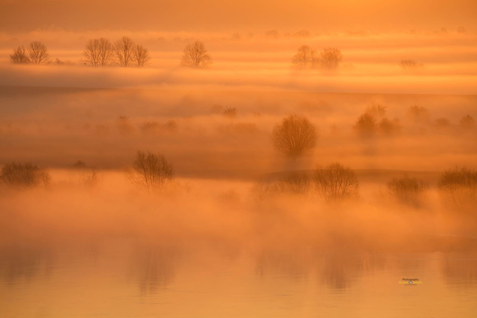Misty morning, sunrise, fog, landscape, colors of sunrise, trees, orange, Hudzik Roman