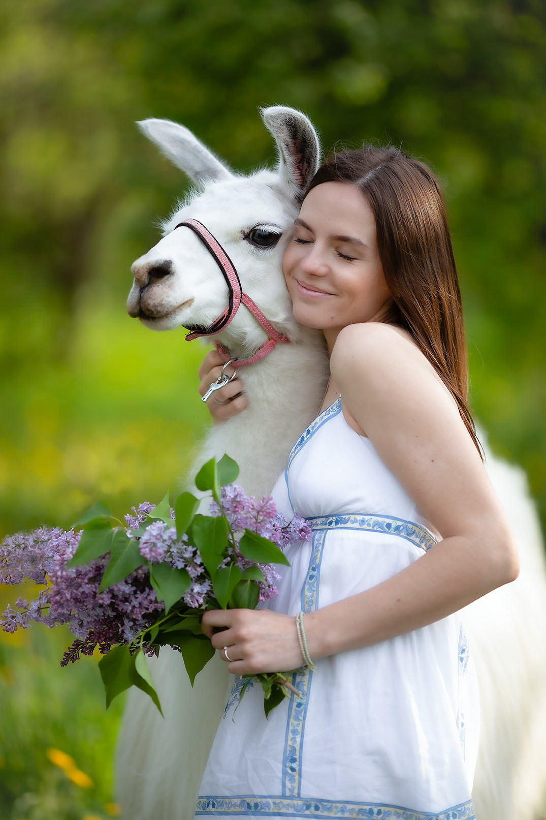 девушка,лама,дружба,красота, настроение, идиллия,природа, girl,lama, friends, emotions, nature, Стукалова Юлия