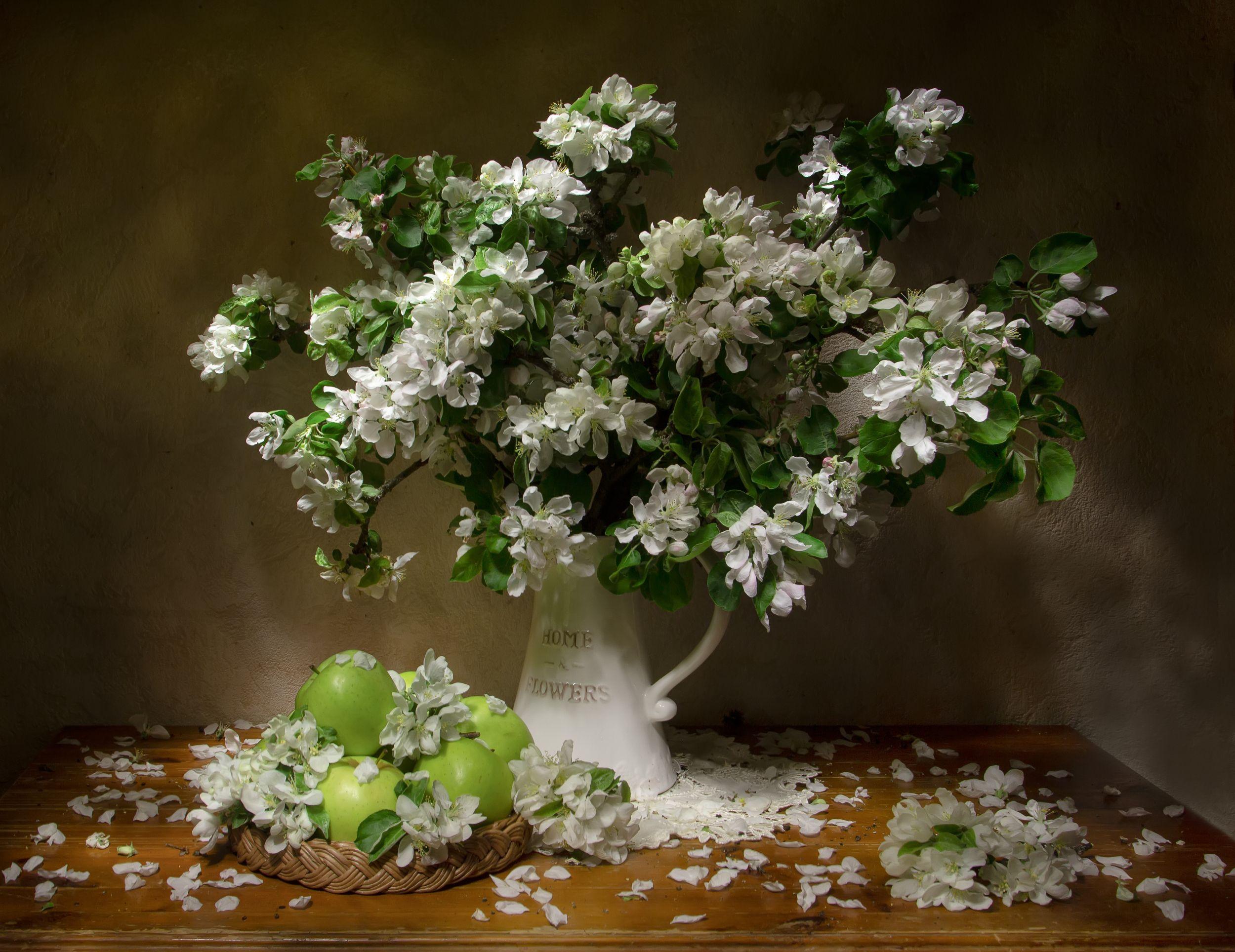 натюрморт. яблоня цвтет, яблоня, цветет, яблоко, яблоки, Феденкова Татьяна