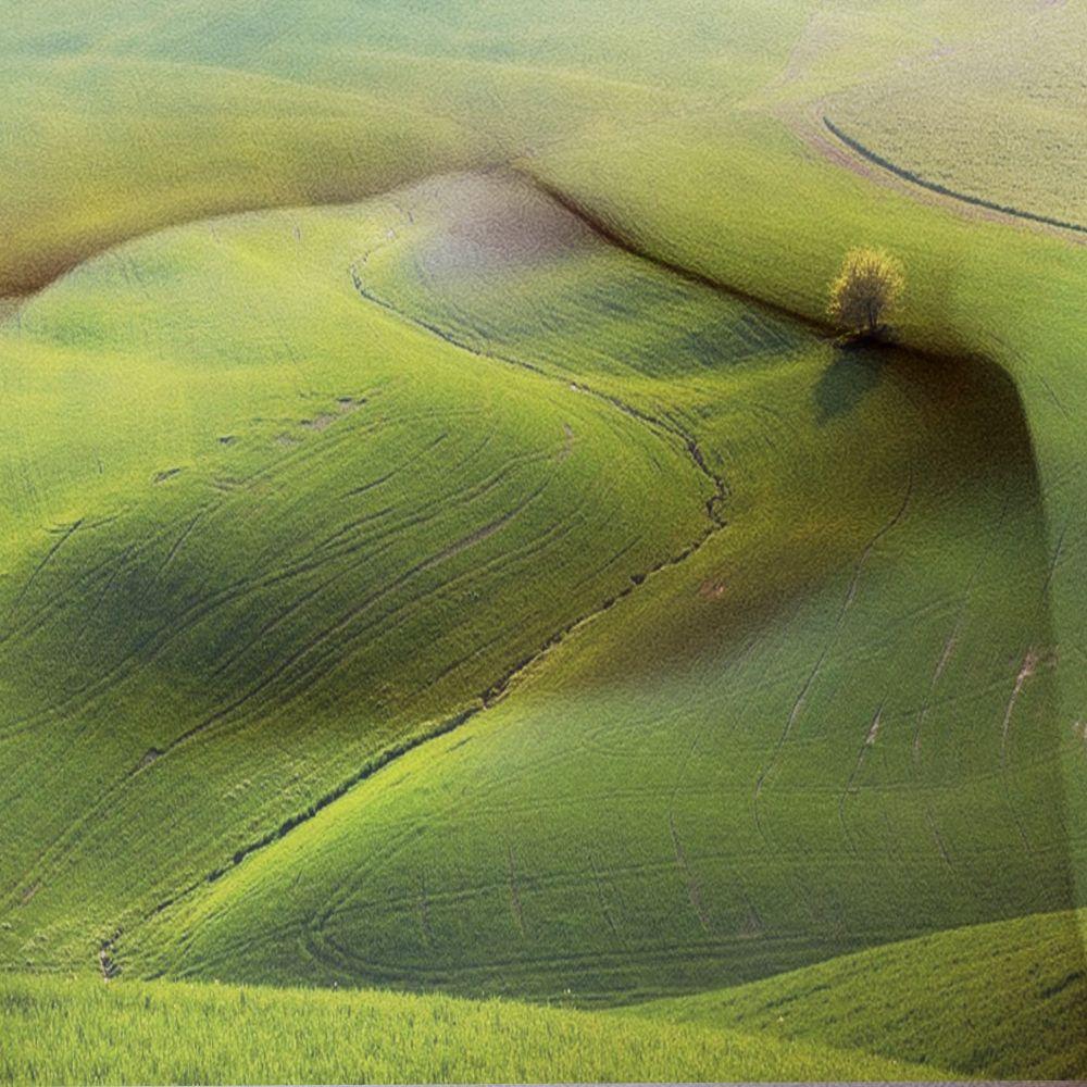 meadows, fields, green grass, hills, female body, chest, art, perspective, illusion, oasis, wood,, Шведов Александр