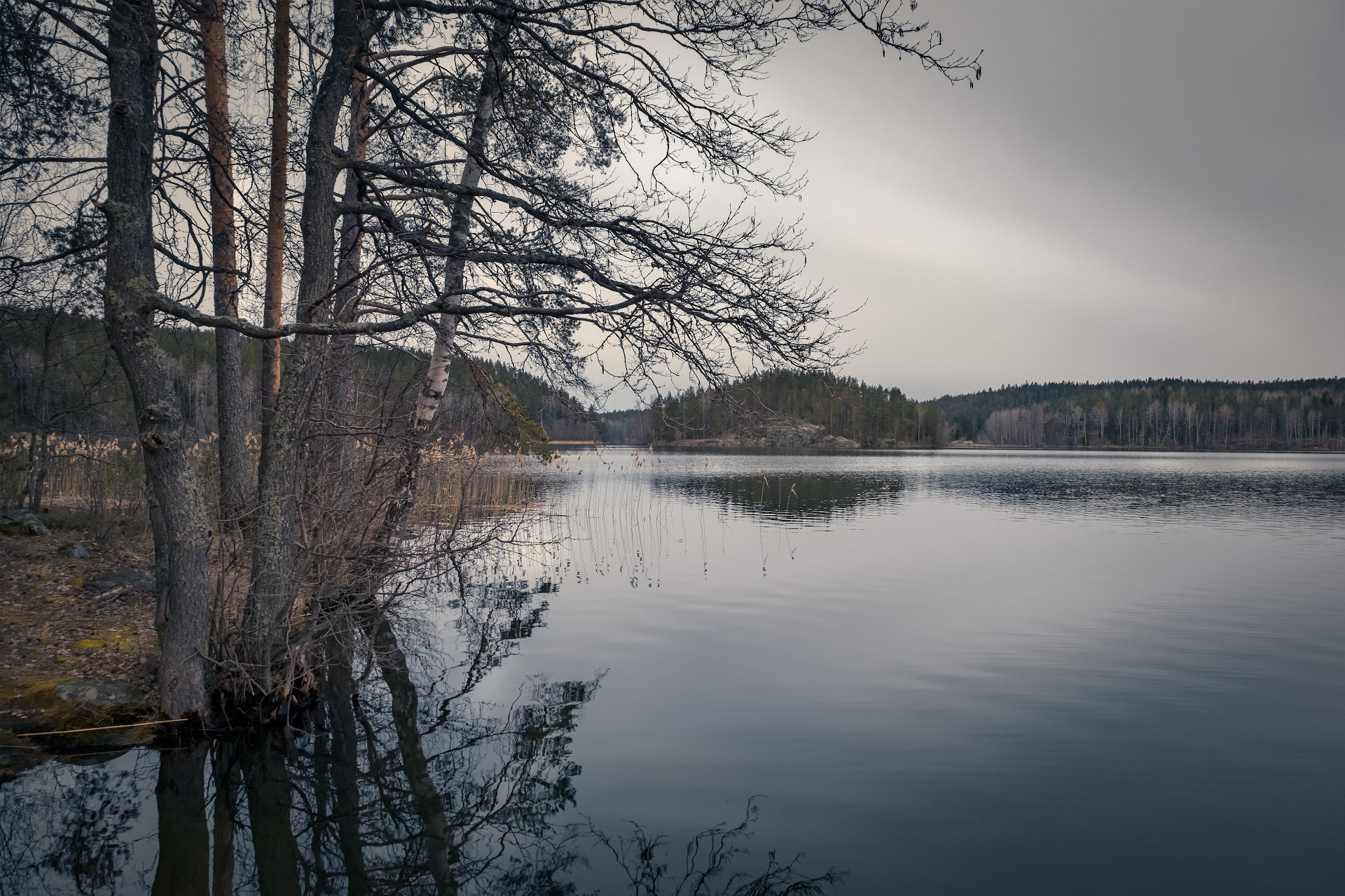карелия, озеро, остров, кортеланъярви, скала, сосна, лес, облака, пейзаж, природа, Чиж Андрей