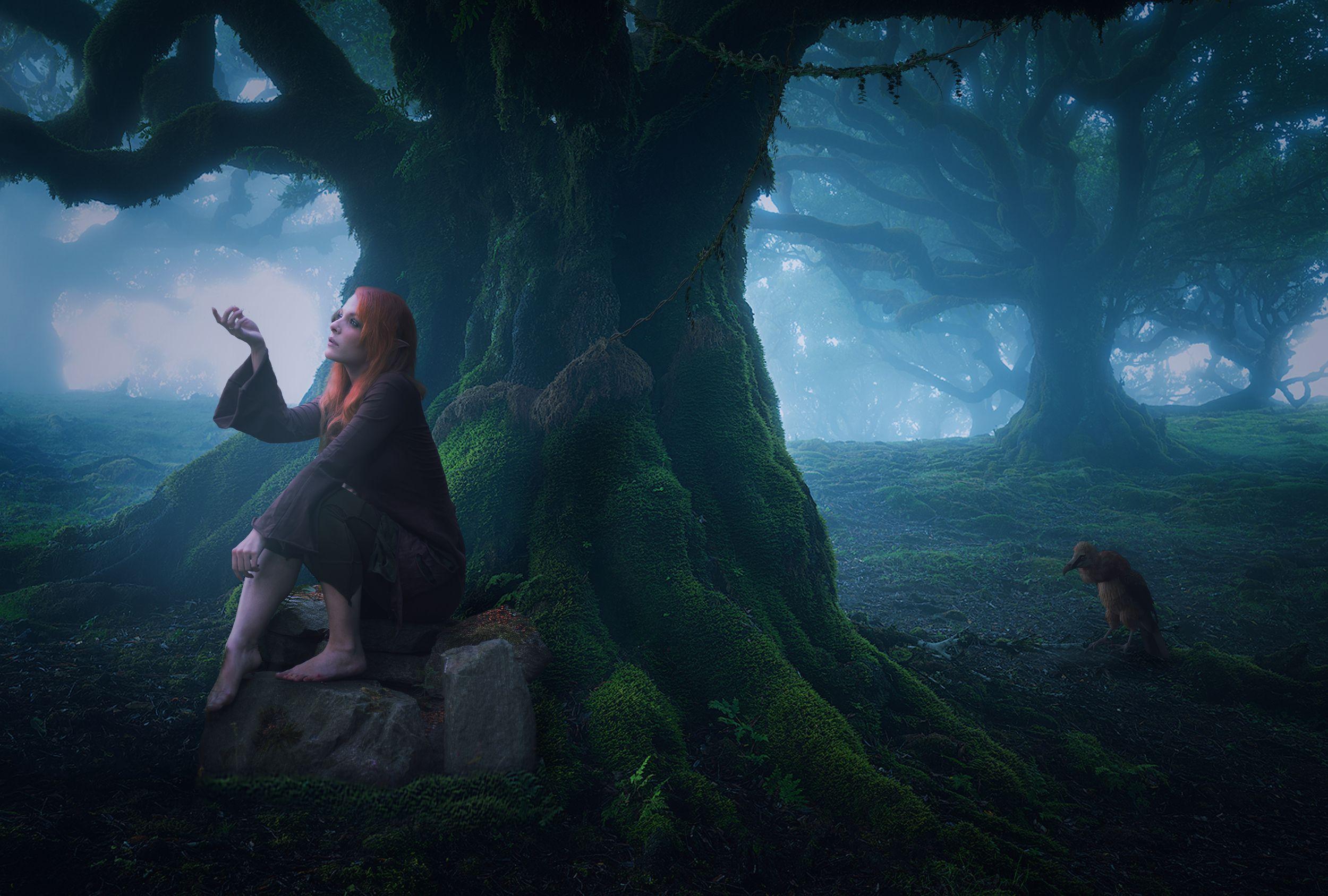 девушка, лес, Sergii Vidov