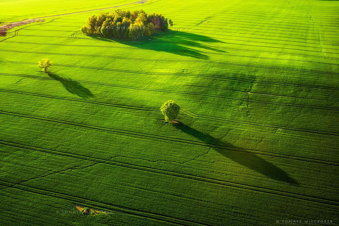 landscape, poland, light, spring, awesome, amazing, sunrise, sunset, lovely, nature, travel, trees, dji, mavic, shadows, fields, Tomasz Wieczorek