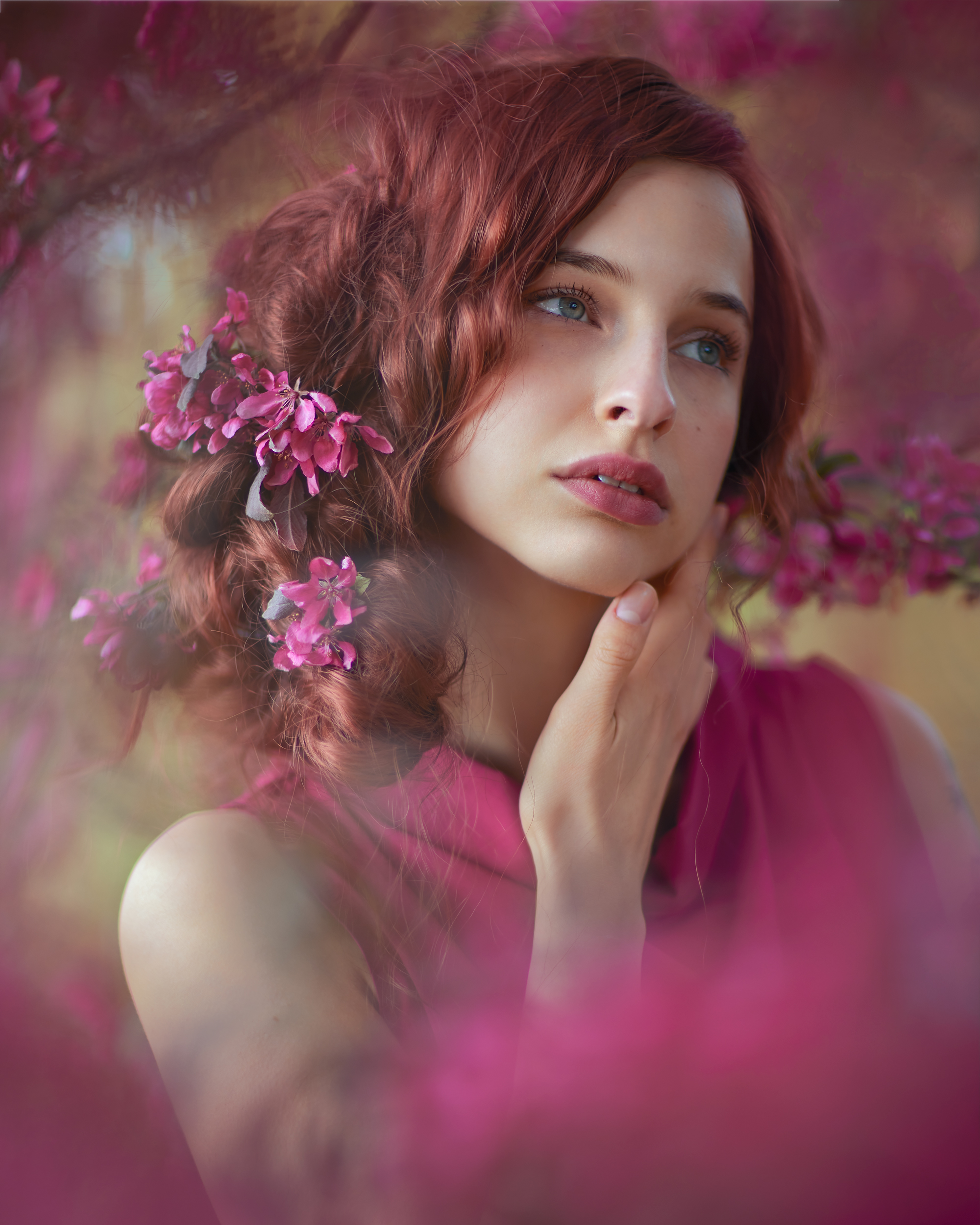 яблоня, маджента, рыжеволосая, Seitner Natalie