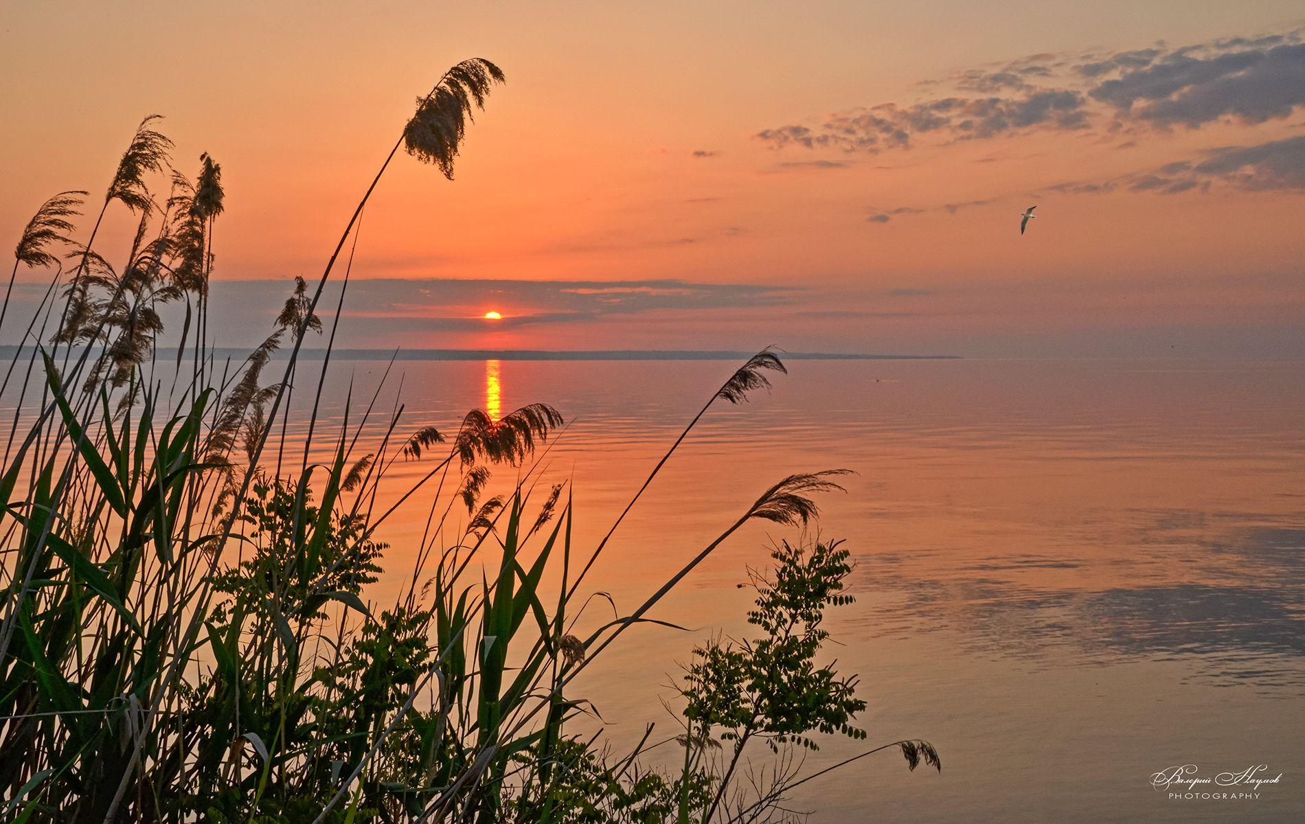 утро, рассвет, восход, небо, облака, дорожка, Валерий Наумов