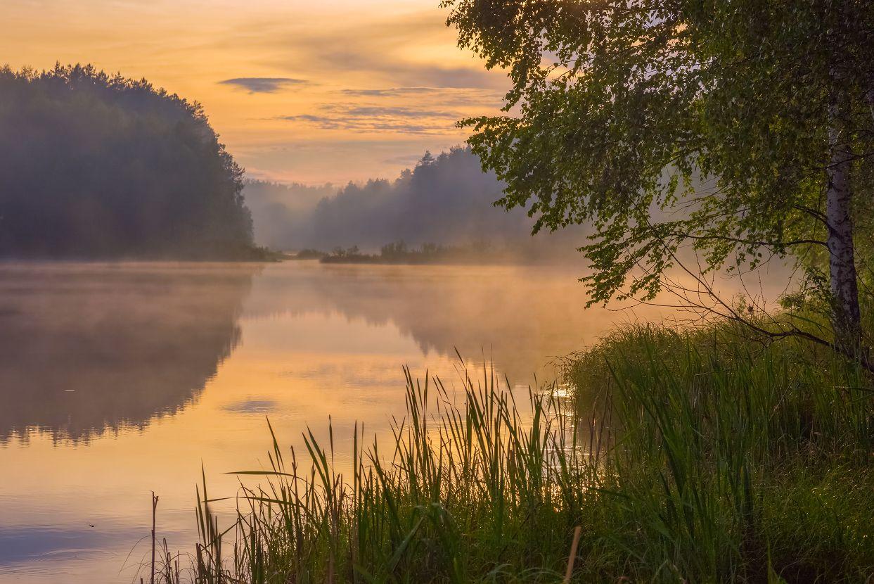 вечер июнь черная порза туман вода закат, Алексеев Дмитрий