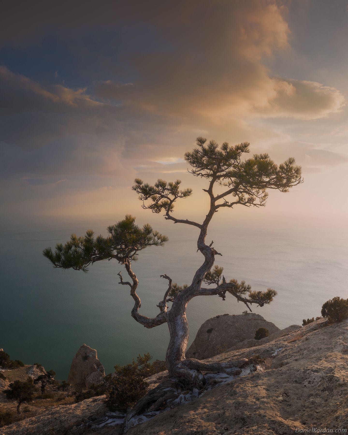 Крым, Даниил Коржонов