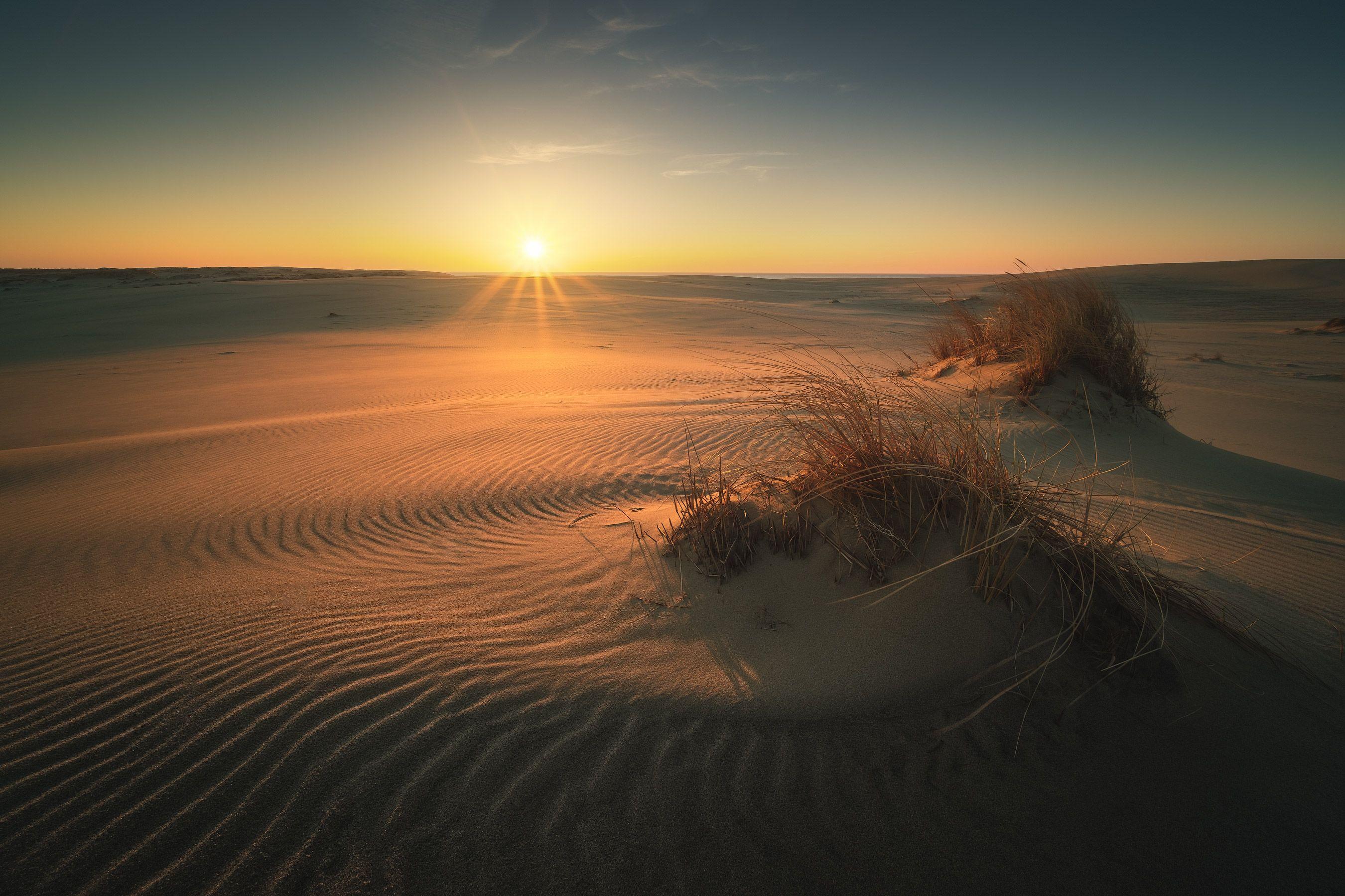 россия, калининградская область, балтика, балтийское море, куршская коса, национальный парк, пейзаж, природа, море, дюны, куршский залив, песок, весна, рассвет, солнце, Оборотов Алексей