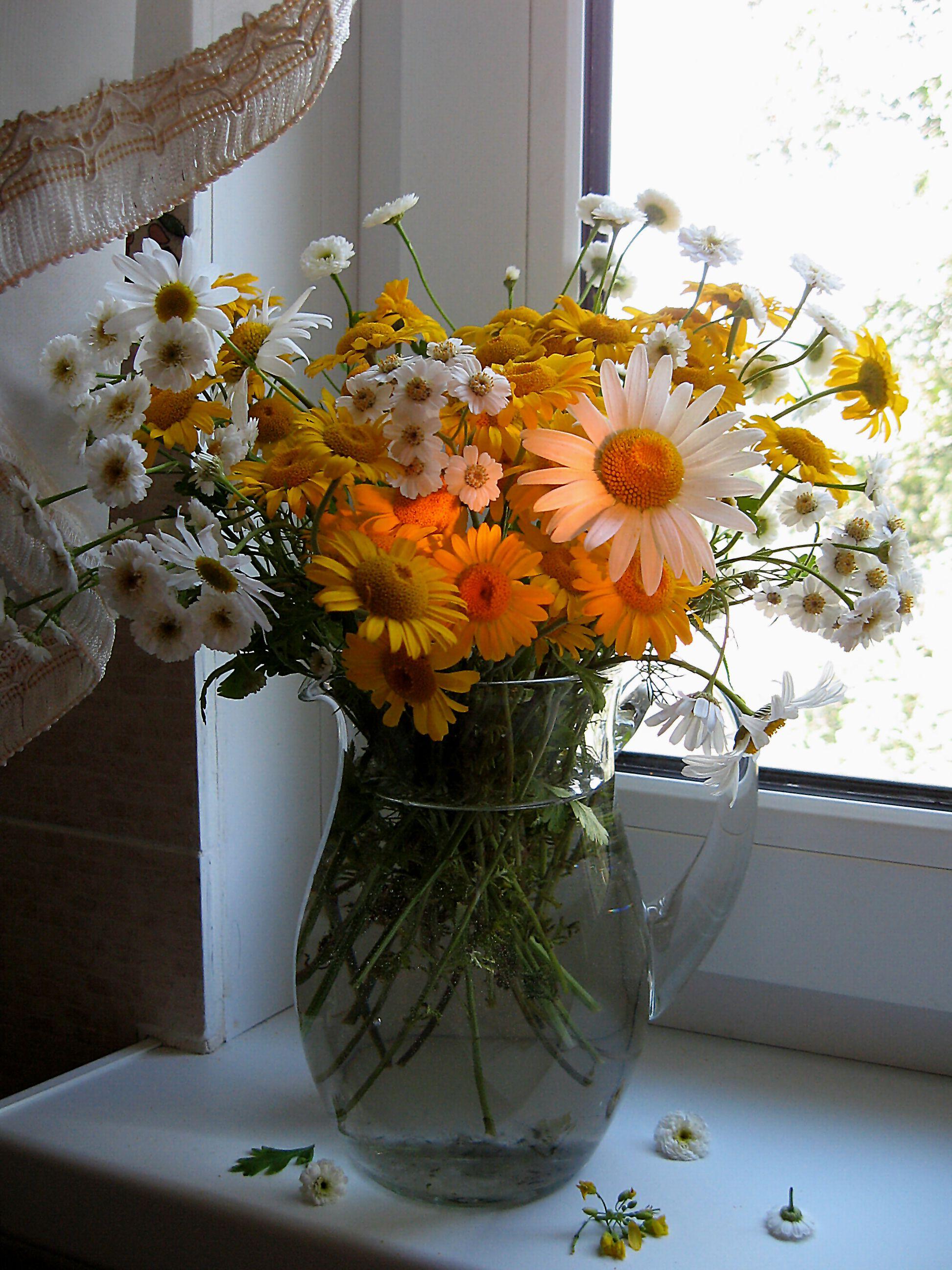 цветы, букет, ромашки, хризантемы, Тихомирова Наталия